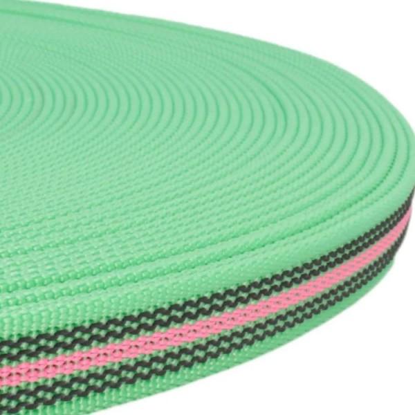Gurtband mit Gummifäden - grün / rosa